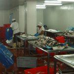 Garantiza EPIGRAN estabilidad de sus productos para varios territorios del oriente del país