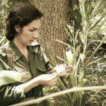 Celia, la mujer, la guerrillera, la cubana de siempre