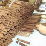 Jornada de homenaje a tabacaleros manzanilleros