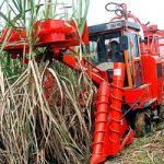 Cuba fabrica máquinas sembradoras de caña para potenciar la zafra