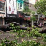 Tifón en Vietnam: marinos desaparecidos y grandes daños materiales