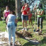Una ofensiva contra «Irma» ha tenido lugar en toda Cuba. Foto: Antonio García Acuña / Vanguardia