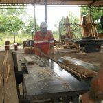 Sobrecumplen planes productivos en Unidad Básica Forestal // Foto Archivo RG