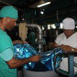 Fábrica de Conservas La Manzanillera // Foto Marlene Herrera