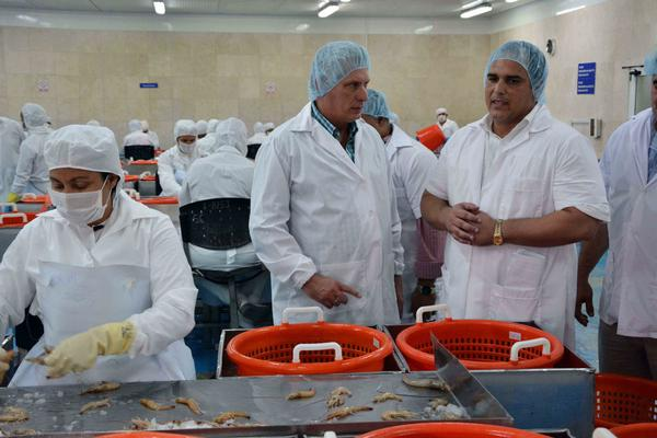Miguel Díaz-Canel Bermúdez (C), miembro del Buró Politico del Partido Comunista de Cuba, y primer vicepresidente de los Consejos de Estado y de Ministros, visita la Empresa Pesquera Industrial de Granma, junto a él Jorge Áreas Bringues (D), director general de la entidad, en el municipio de Manzanillo, provincia Granma, Cuba, el 24 de enero de 2018. ACN FOTO/Armando Ernesto CONTRERAS TAMAYO/ogm